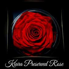 Τριαντάφυλλα for ever