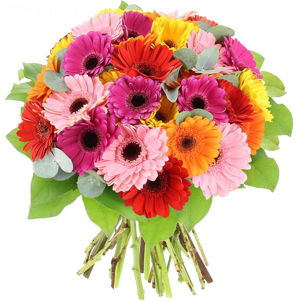 ΚΑΤΑΣΤΗΜΑ E-SHOP FLOWERS FOR EVERY OCCASION ORDERS TO GREECE ATHENS ATTIKI ΑΠΟΣΤΟΛΗ ΑΝΘΕΩΝ ΠΕΡΙΟΧΗ ΑΤΤΙΚΗΣ