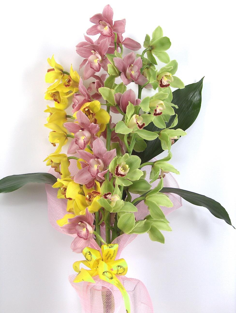 bouquet orchids cymbidium LADY