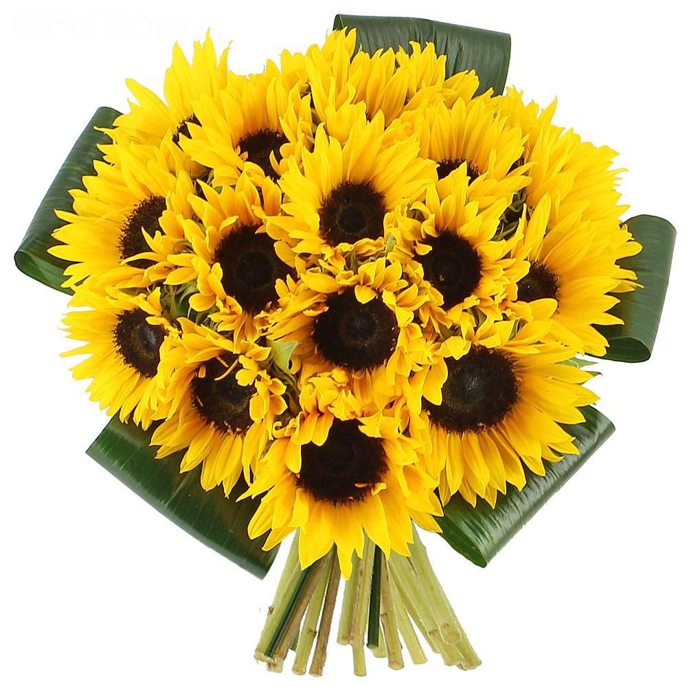 bouquet sunflowers 1 ΗΛΙΑΝΝΑ