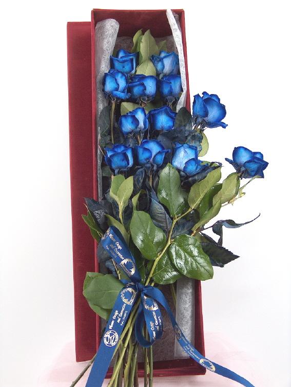 roses in the box Bleu roses