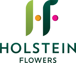 Holstein-Flowers-2012-e1406274705505