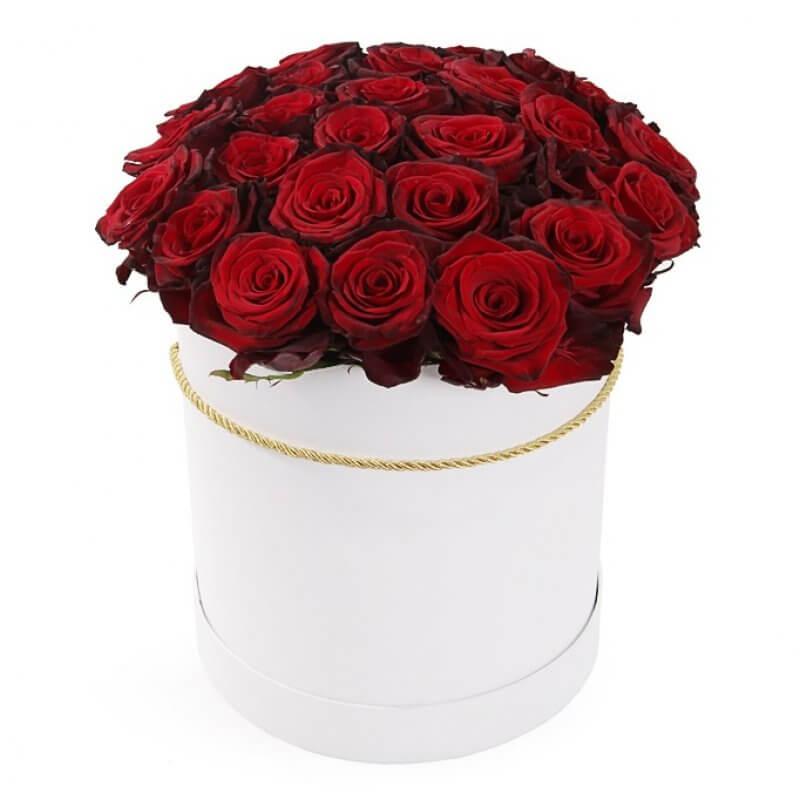 ROSES IN WHITE BOX