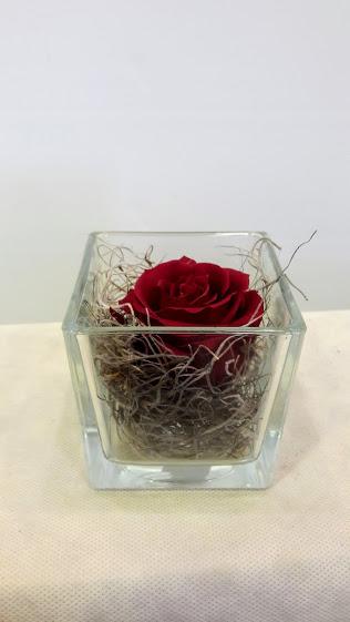 forever roses glass cube