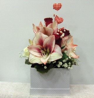 flowers in the box amaryllis red white
