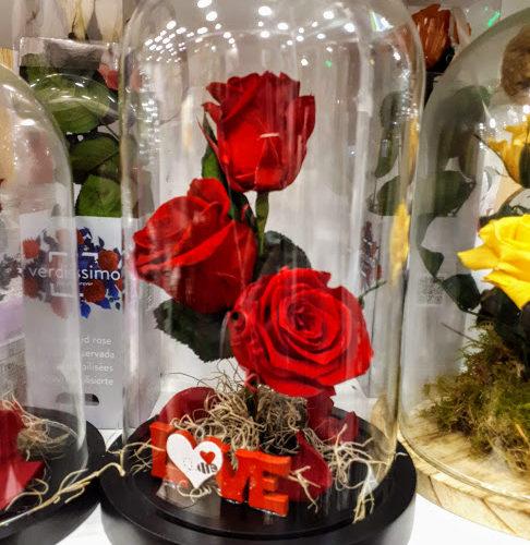 forever roses τριαντάφυλλα για πάντα σε γυάλινη καμπάνα 25 εκ