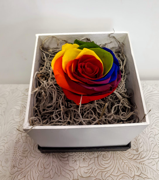 forever rainbow roses in box 1