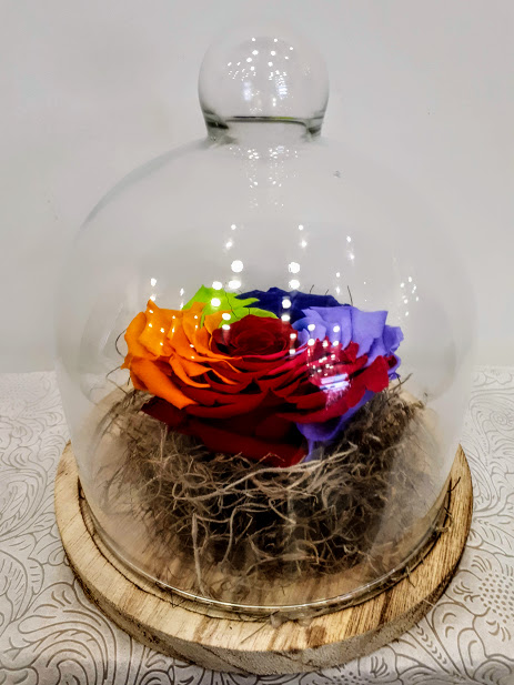 forever big rainbow roses in glass