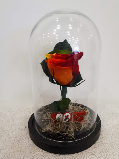forever rainbow roses in glass