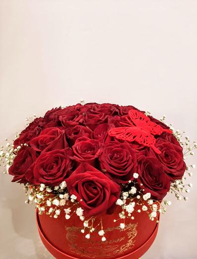 red naomi roses 31pcs in box