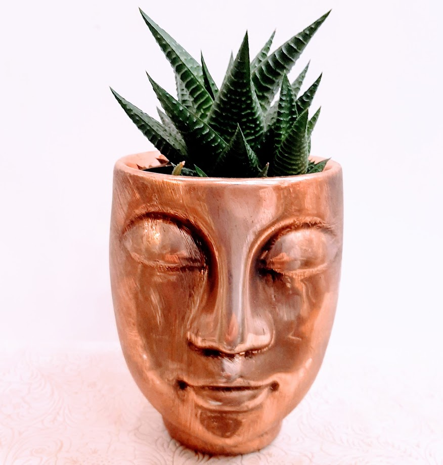 pachifitum in face pot1